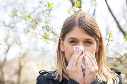 Is an Air Purifier the Solution to Seasonal Allergies?